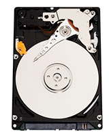 Internal Mobile Hard Drive 500 GB WD5000LPVX - Western Digital