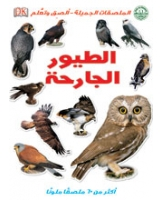 الطيور الجارحة