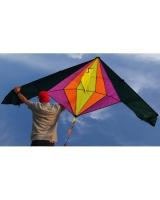 Sporting Kite