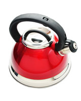 Whistling kettle WX-3001QC - Home