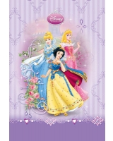 Princess كشكول 100 ورقة مسطر سلك مقاس 20*28