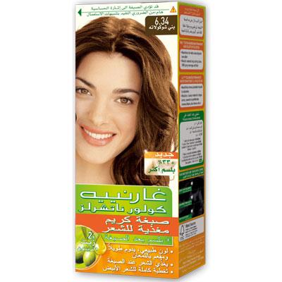 Color Naturals 6.34 Chocolate - Garnier :: Hair Colour :: Hair Care ...