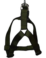 Polyester Harness + Leash 2.5 cm Green - AM