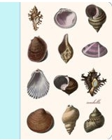 Seashells Mini Journal