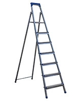 Galvanized Steel Ladder B7 - Cagsan