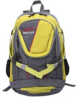 Backpack Grey/Yellow BLB-3117-15.6 - BestLife