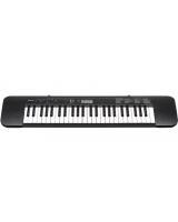 Standard Keyboards CTK-245 - Casio + Casio AC adaptor