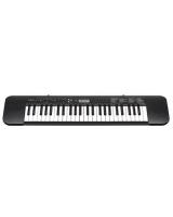 Standard Keyboard CTK-240 - Casio + Casio AC adaptor