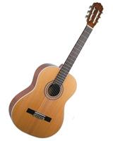 Guitar LG-480 - AXL