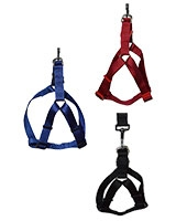 Nylon Harness + Leash 2 cm - ZooGo